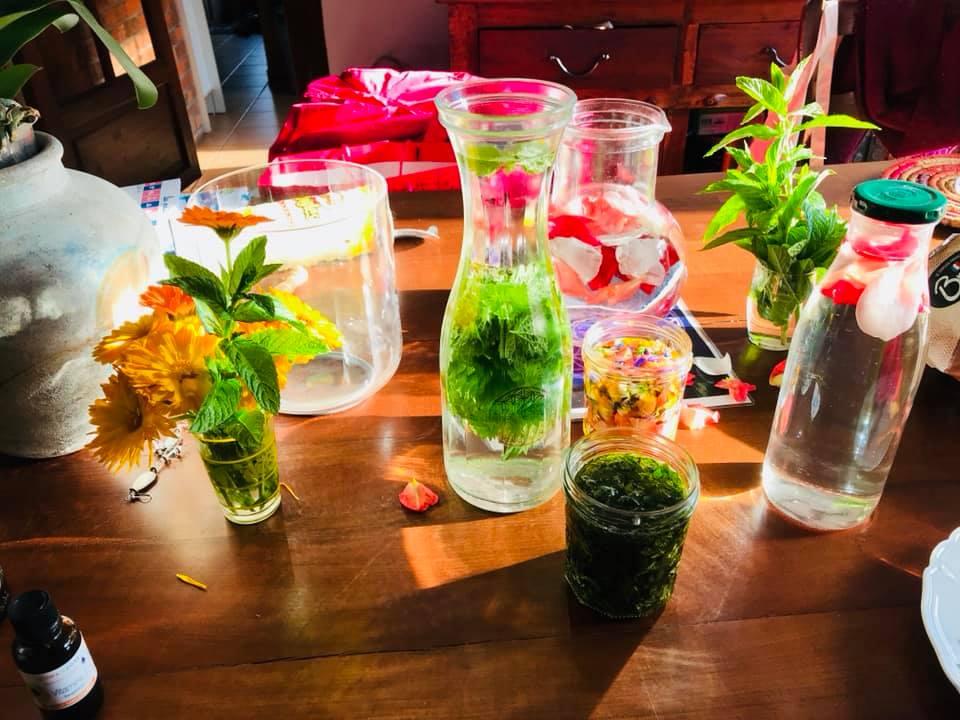 Atelier transformation des plantes à l'Institut Padma